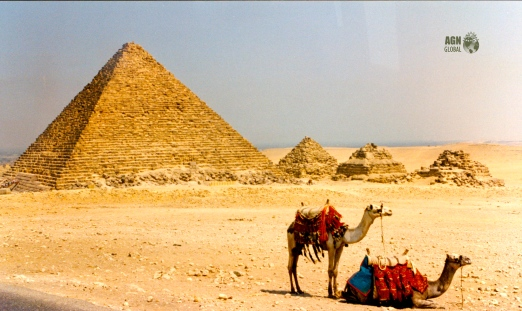 Egypt Aisha Niang_00024A